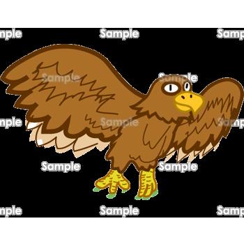 鳥の王者 鷹 無料イラスト 年賀状プリント決定版 2020